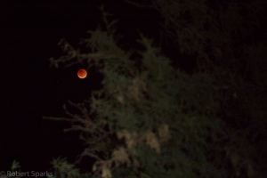 lunar-eclipse-9-27-15_21154819683_o