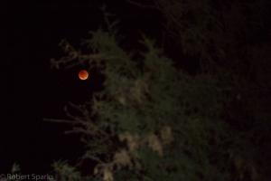 lunar-eclipse-9-27-15_21154819683_o